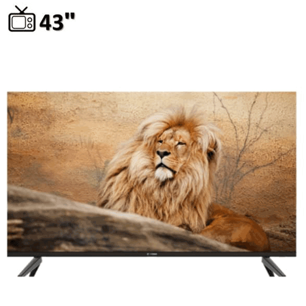 Snowa SSD-43SA56 LED TV